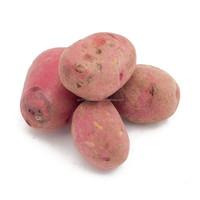 Potatoes Seeds