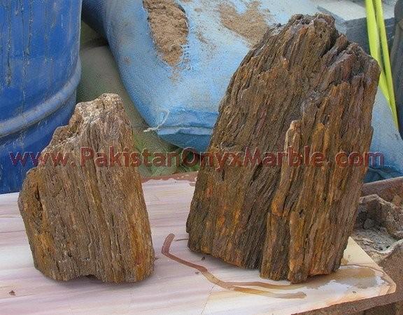 petrified-wood-rough-05.jpg