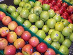 Grade A Fresh Apples
