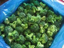 Frozen Broccoli ,New Crop