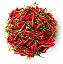 High Quality Hot Chilli In New Crop