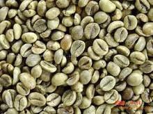 Robasta Coffee beans