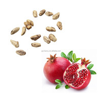 2015 New Organic 15Pcs/Bag Turkey Giant Pomegranate seeds Punica Granatum Shrub Fruit Tree RARE Nutritious Easy To Grow