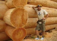 The original log cabin homes (Nothern Siberian Russian Pine, larch, cedar)