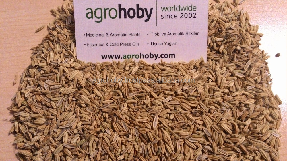 Fennel Seeds in Arabic Grade on Fennel Seed