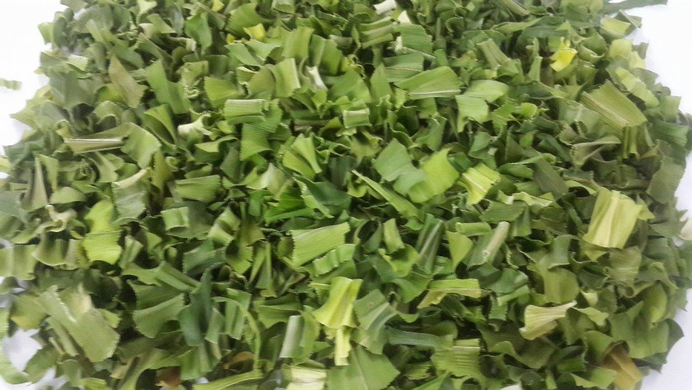 dried pandan leaf slices.jpg