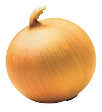 Yellow onion fresh (golden) higest quality from our farms