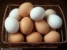 Fresh Chicken Eggs/white and brown table eggs.