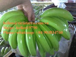 Fresh Natural Fruit for Cavendish Banana Cultivation