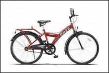 Buzz 24T Mountain Bicycle