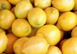 Grade A Fresh Lemon Fruit