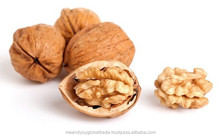 Whole Raw Walnuts With Shell Best Indian Quality Different Size Best Price