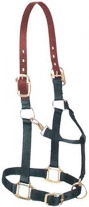 Passeios a cavalo cabresto de nylon fábrica melhor preço nylon lhama halter Nylon halter horse