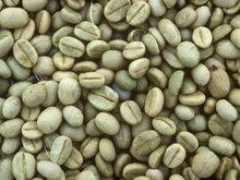 ROBUSTA GREEN COFFEE BEAN & ROASTED Indonesia Origin
