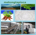 Tapioca amido - Mekong Tapioca - bom preço