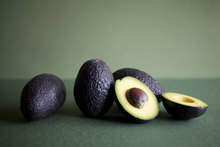 Fresh Fruit Avocados Hass Premium Quality from Chile