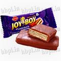 Recubierto de chocolate galletas obleas / Alegría niño galletas de chocolate