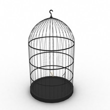 new style pet cage high quality clear acrylic bird cage for sale