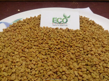 Dried Fenugreek Seeds From Gujarat - India
