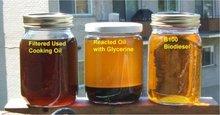 Used cooking oil UCO & USED ACID OIL