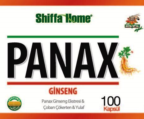Panax Logo