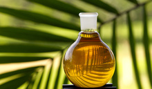 Palm Oil (Cooking Oil)