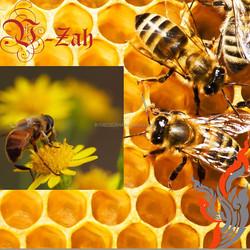 Artificial Cheap honey,Longan Flower Honey,Pure Honey