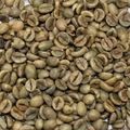 A granel de vietnam granos de café verde/robusa café