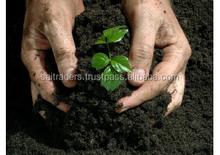 Organic Waste Compost Fertilizer