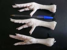 Brazil Factory Approved China Chicken Feet and Paws with Other parts for sale