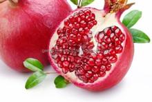 Fresh fruit for spain