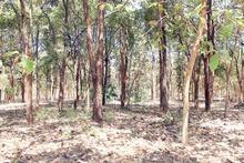 500 acres agricultural land for sale