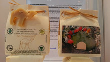 toilet natural soap ( with camel milk)
