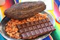 /cacao cacao/chocolate bean de portugal es el mejor