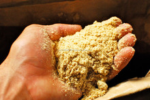 Rice Bran for cattle,fish,animal feed