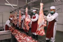 Frozen Buffalo Boneless Meat