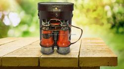 Vintage Marine Brass Antique Nautical Binocular Red Leather Case