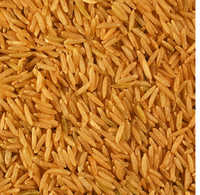 Paddy Basmati Rice
