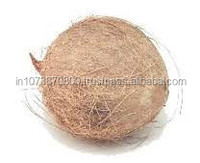Fresh Dried coconut for Sale