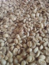 Arabica Coffee, Robusta Coffee Grade AA quality