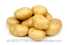 High Quality Fresh Potatoes VERY HIGH GRADE Hot Sales