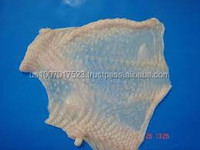 Frozen Chicken Skin (competitive price)