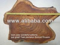 Teakfarms or teak logs rough squared for sale from Ecuador