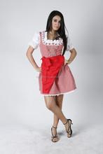 New Style German,Springfest,Trachten,Oktoberfest,Halloween,Dirndl,3-pcs red apron dress