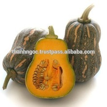 Supply Fresh Pumpkins from Vietnam with Best Price and High QualityPumpkins from Vietnam with Best Price and High Quality