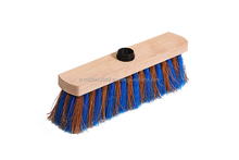 Striped Broom