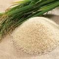 farelo de arroz farinha raçãoparaanimais