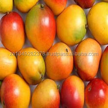 Good Quality Fresh Mangoes