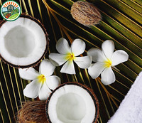 IQF Coconut From Fresh Fruits Corporation With The Price Individual Quick Frozen Coconut Meat