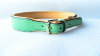 wholesale Large Green Dog Collars & leashes 2014 New Pet Products